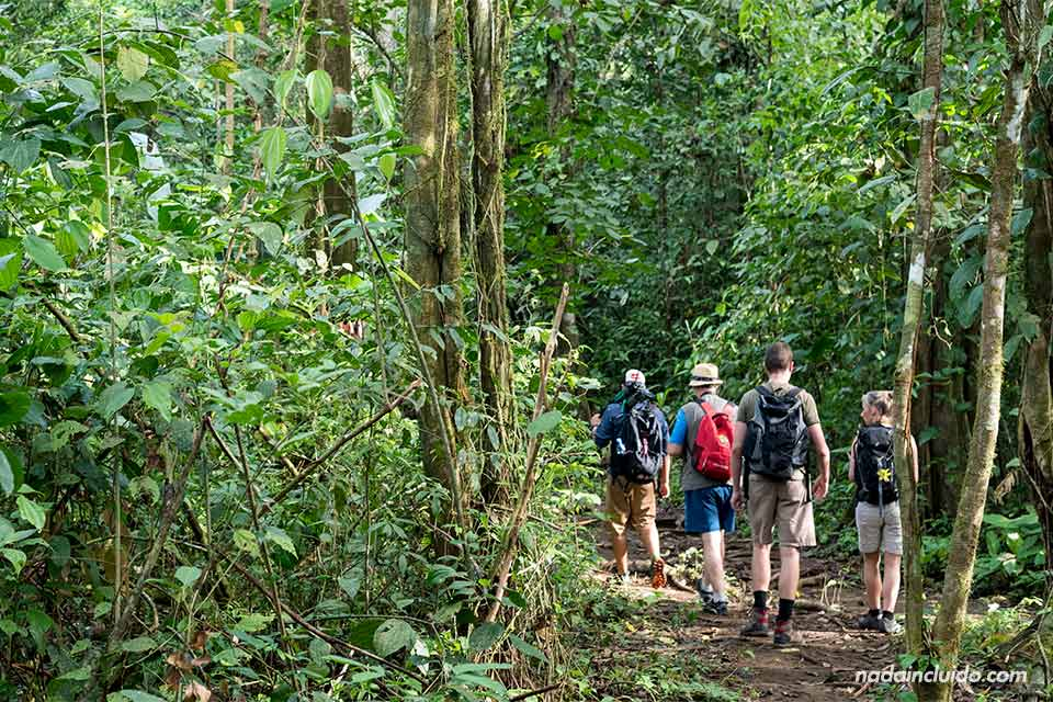 Turistas recorren los senderos del parque nacional de Corcovado (Costa Rica)