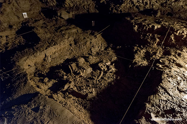 Huesos fosilizados en la cueva del oso cavernario de Tella (Sobrarbe, Aragón)