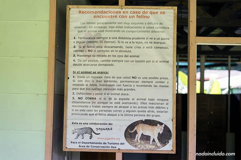 Un cartel en la estación Sirena del parque nacional de Corcovado indica qué hacer en caso de encontrarse un felino