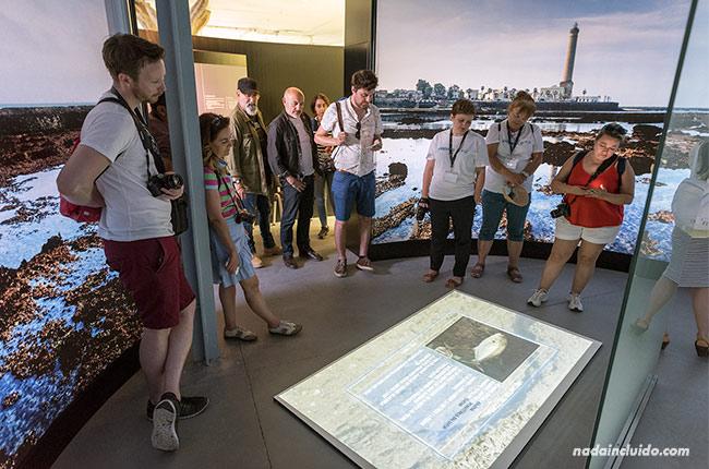 Visitando el centro de interpretación del camaleón de Chipiona (Cádiz)
