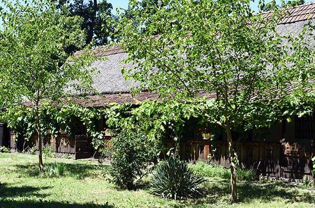 Cabaña en el Museo Satului (museo etnográfico) de Timisoara (Rumanía)