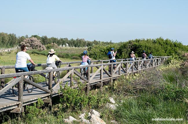 Recorriendo en bici la Vía Verde de Chipiona (Cádiz)