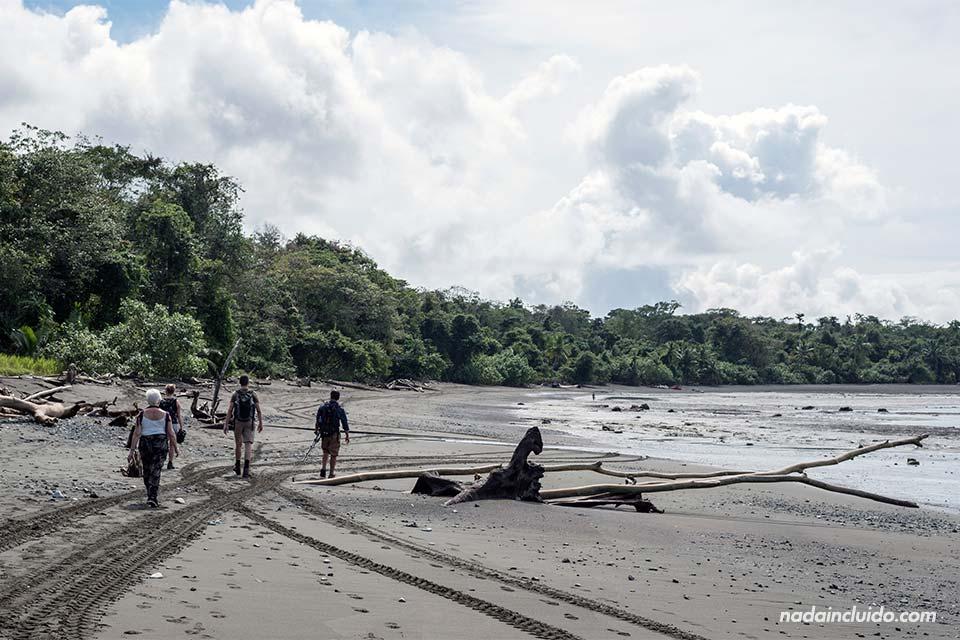 Un grupo de turistas pase por playa Sirena, parque nacional de Corcovado (Costa Rica)