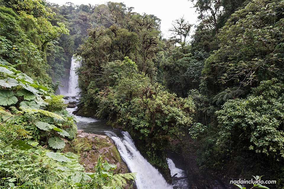 Cascadas varias junto a la Catarata de la Paz (Costa Rica)