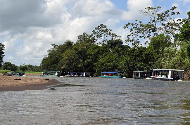 Fila de botes en el canal que une La Pavona con Tortuguero (Costa Rica)