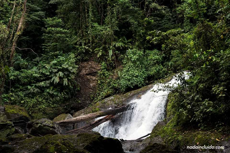Cascada Naguala, Drake (Costa Rica)