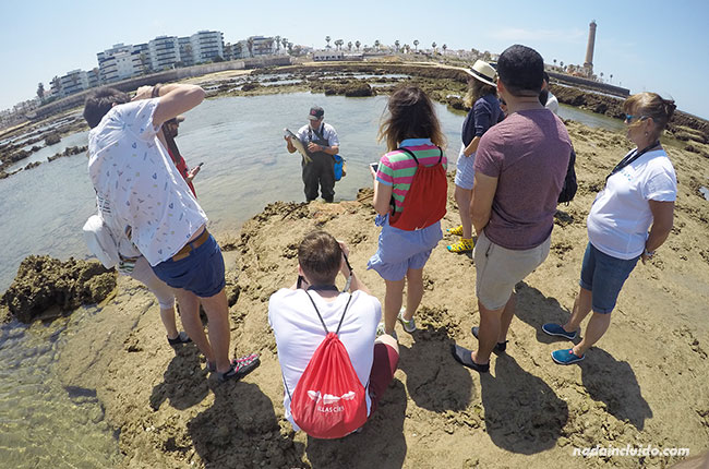 Blogueros viendo a un pescador en los corrales de Chipiona (Cádiz)