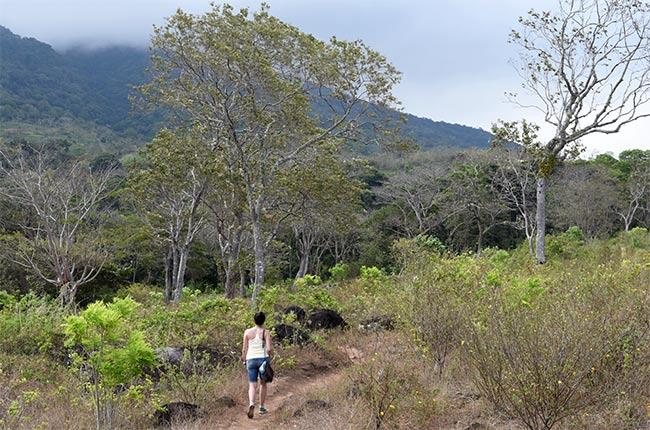 Subiendo al Volcán Maderas, Isla de Ometepe (Nicaragua)