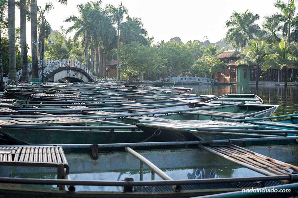 Barcas amarradas en el puerto de Tam Coc, en Ninh Binh (Vietnam)