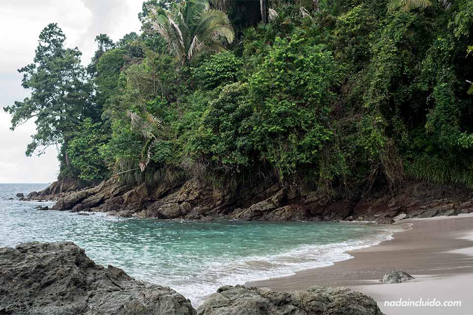 Cala en la playa del parque nacional Manuel Antonio (Costa Rica)