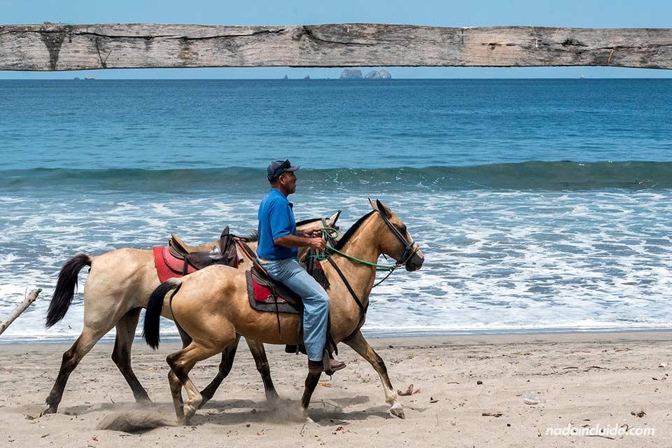 Caballos en Playa Brasilito (Costa Rica)