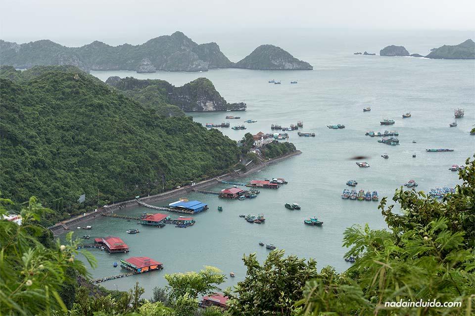 Vista de la Bahía de Lan Ha desde la isla de Cat Ba (Vietnam)