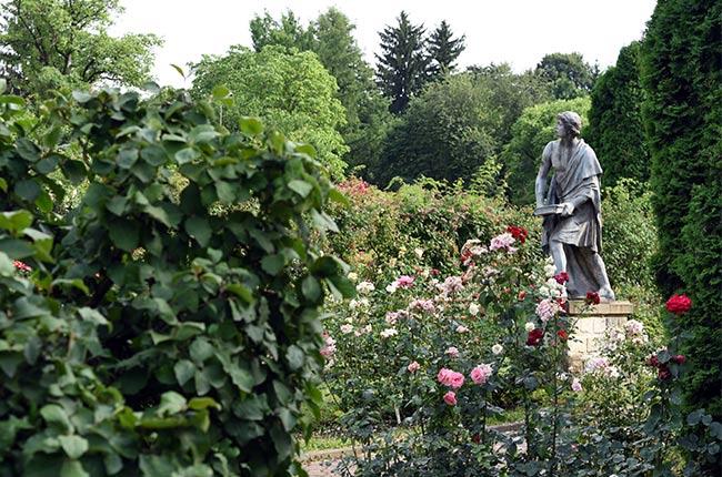 Estatua en el Jardín Botánico de Cluj-Napoca (Rumanía)