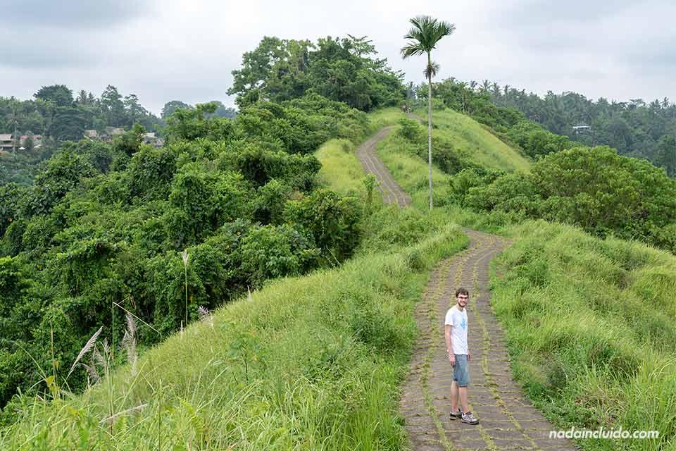 En el Campuhan Rigde Walk, Ubud (Bali, Indonesia)