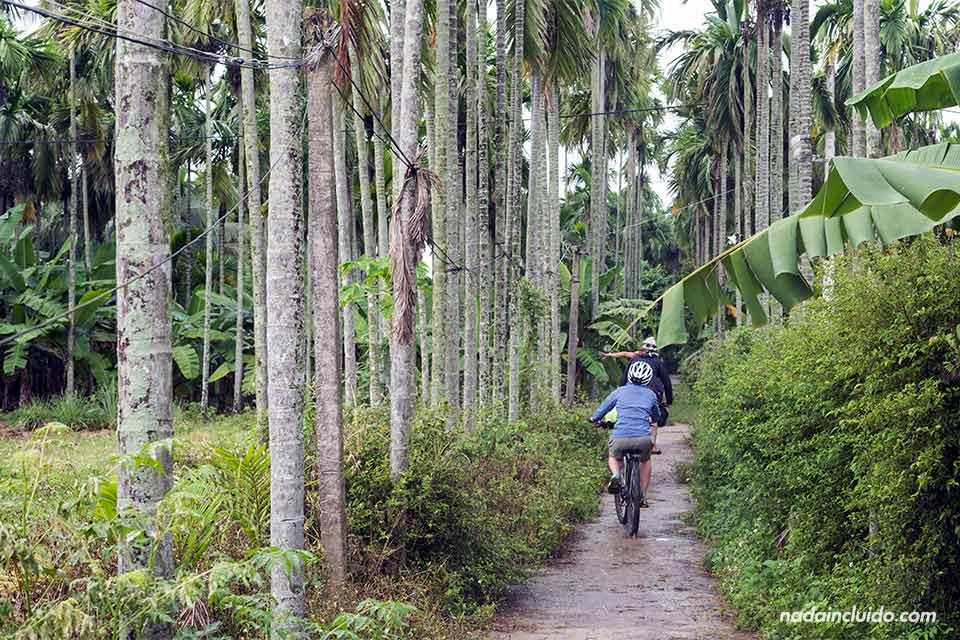 Recorriendo los alrededores de Hoi An en bicicleta (Vietnam)