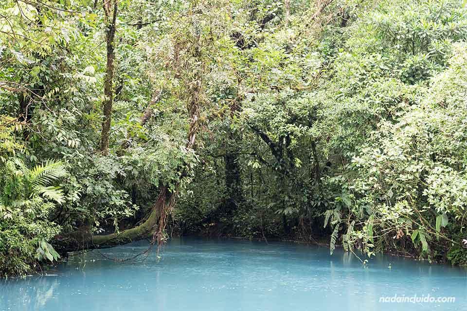 Río Celeste, en el Parque Nacional del Volcán Tenorio (Costa Rica)