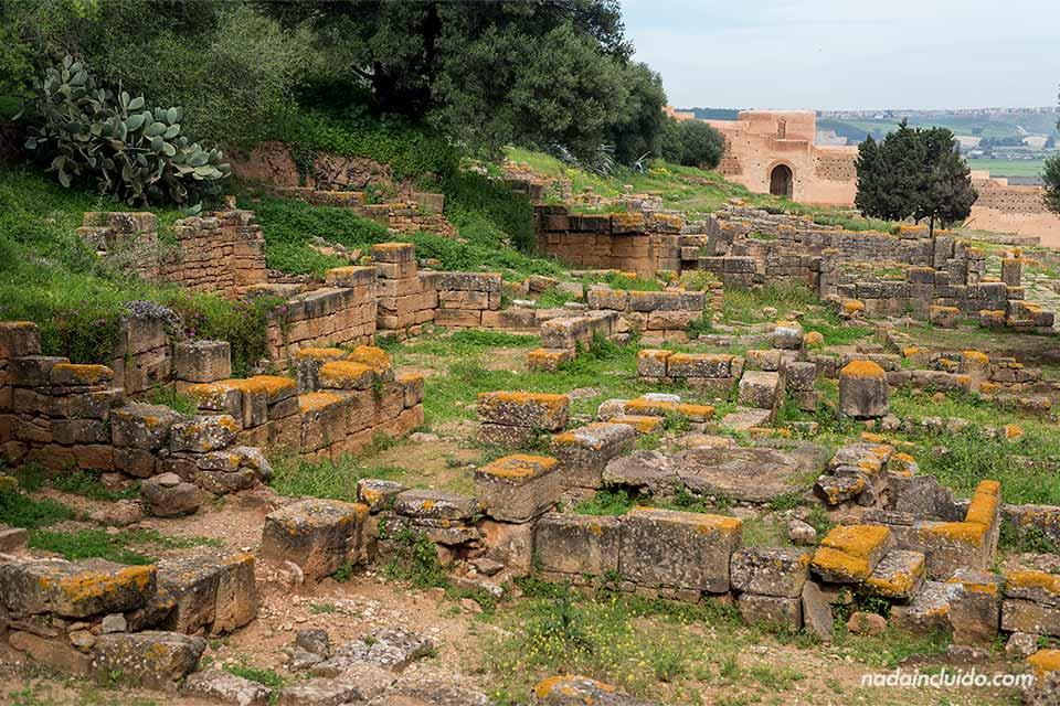 Ruinas en la necrópolis de Chellah en Rabat (Marruecos)