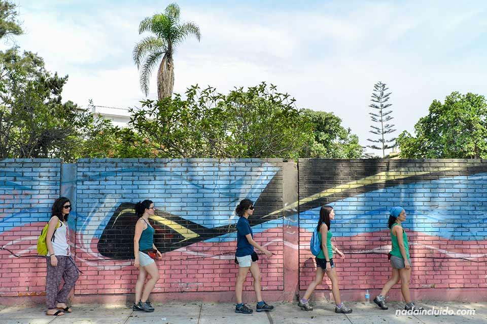 Barranco,-muro-(las-5)