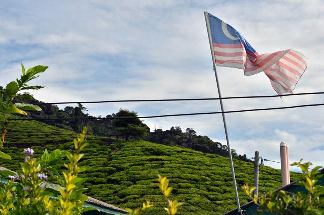 Una bandera de Malasia ondeando en un poblado de Cameron Highlands
