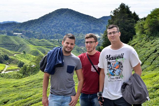 En las plantaciones de té de Cameron Higlands, cerca de la ciudad de Tanah Rata (Malasia)