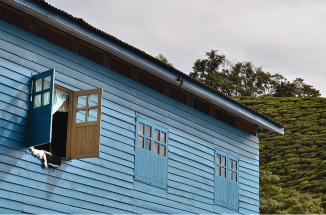 Casa de pueblo en una plantación de té de Cameron Highlands (Malasia)