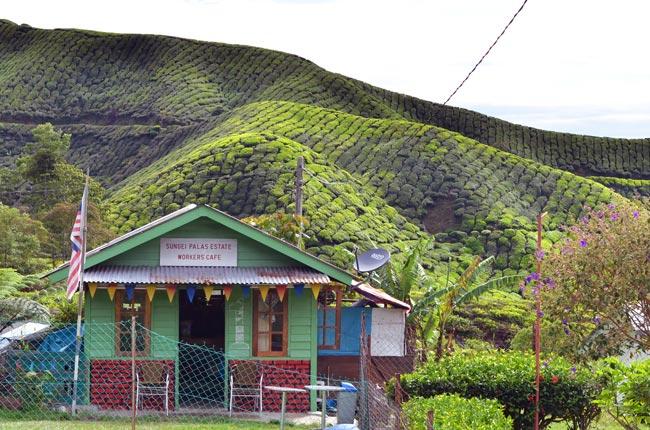 Bar en un poblado de Cameron Highlands (Malasia)