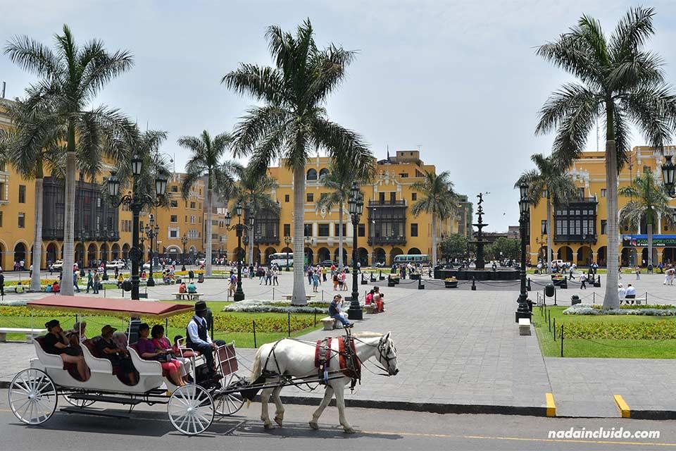 Lima,-plaza-de-las-Armas,-caballo