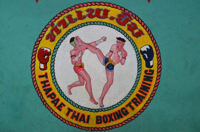 Logo del Thapae Boxing Stadium (Chiang Mai, Tailandia)