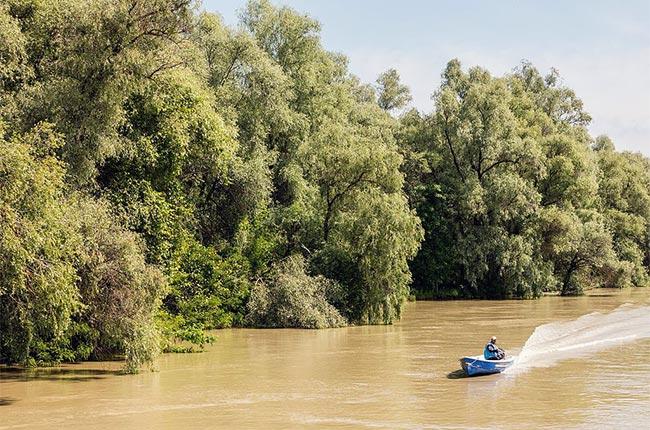 Paseo en barca por el Delta del Danubio (Rumanía) - Foto de Wikipedia
