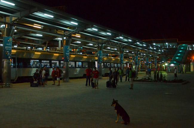 Perro callejero en la estación de tren de Donetsk (Ucrania)