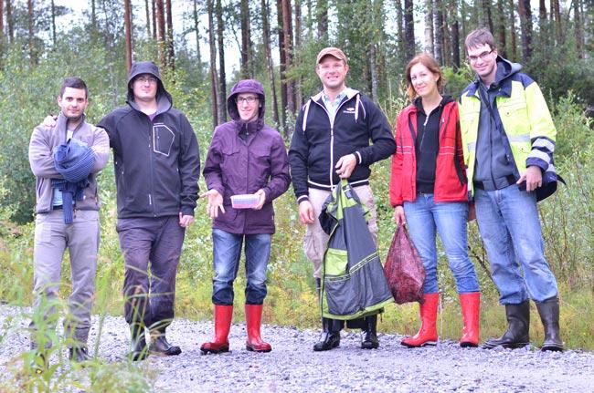 Recogiendo moras en un bosque de Petalax (Finlandia)