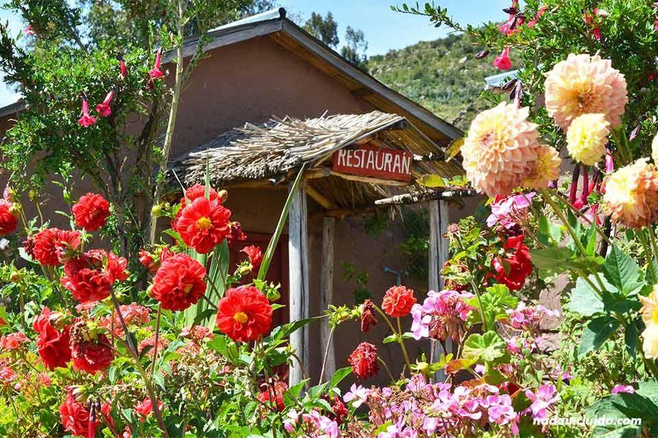 Llachón,-casa-Magno,-restaurante,-entre-flores