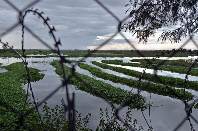 Valla de alambre rodeando los Killing Fields (Phnom Penh, Camboya)