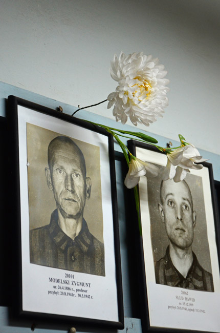 Fotografías de víctimas en el campo de concentración de Auschwitz (Polonia)