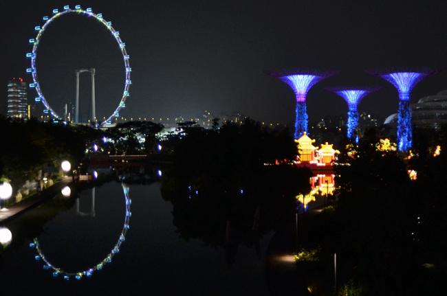 La noria Singapur Flyer sobresale junto a los Gardens By the Bay (Singapur)